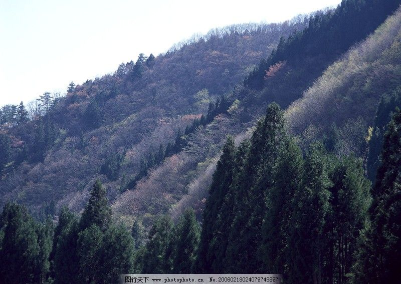 四季风情0071 自然风景