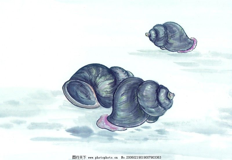 水下动物画0016