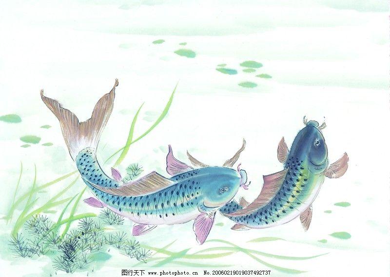 水下动物画0026