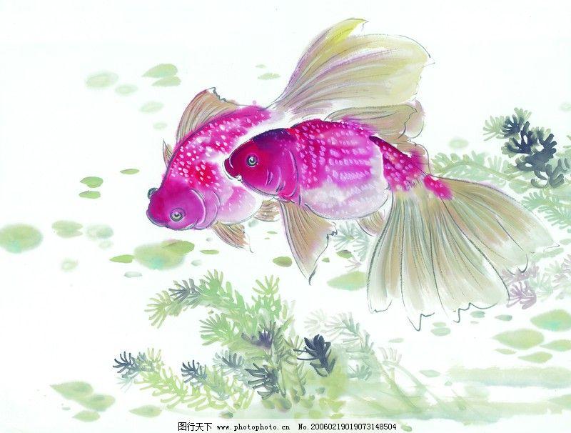 水下动物画0021