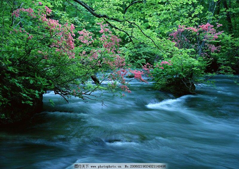 自然风景 溪流水源