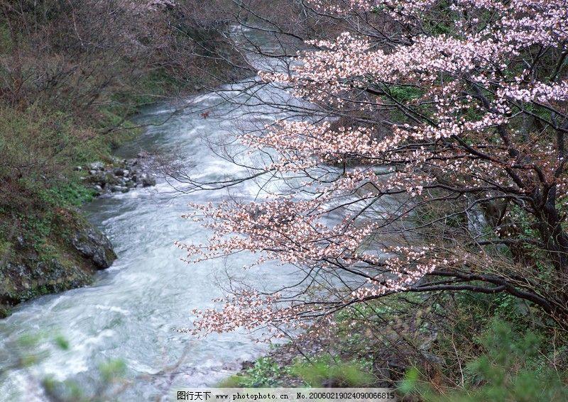溪流水源0052 自然风景
