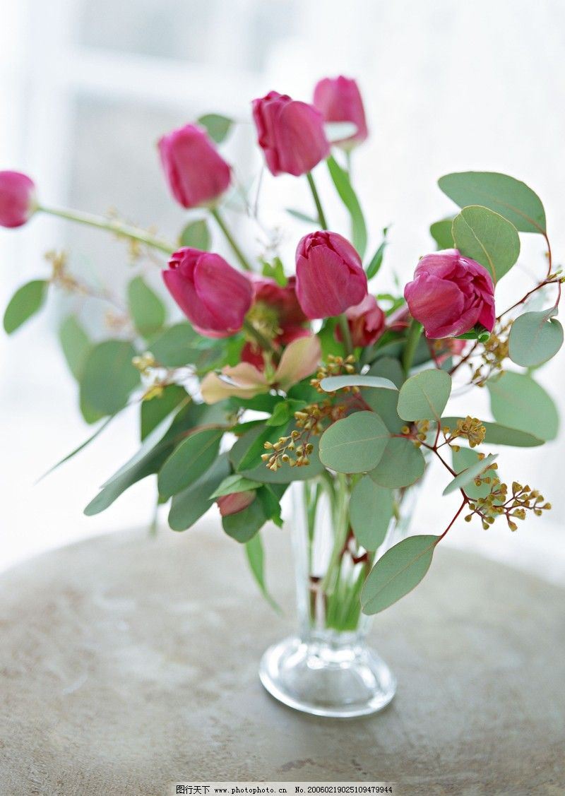 自然风景 花卉艺术