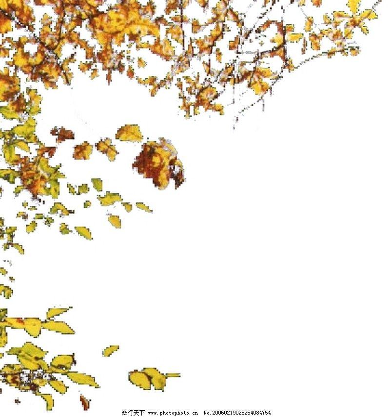 ppt边框素材树木