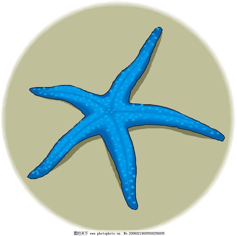 海洋动物0530