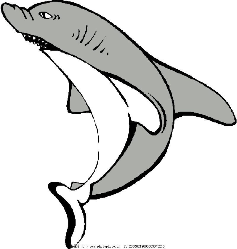 水中动物0226