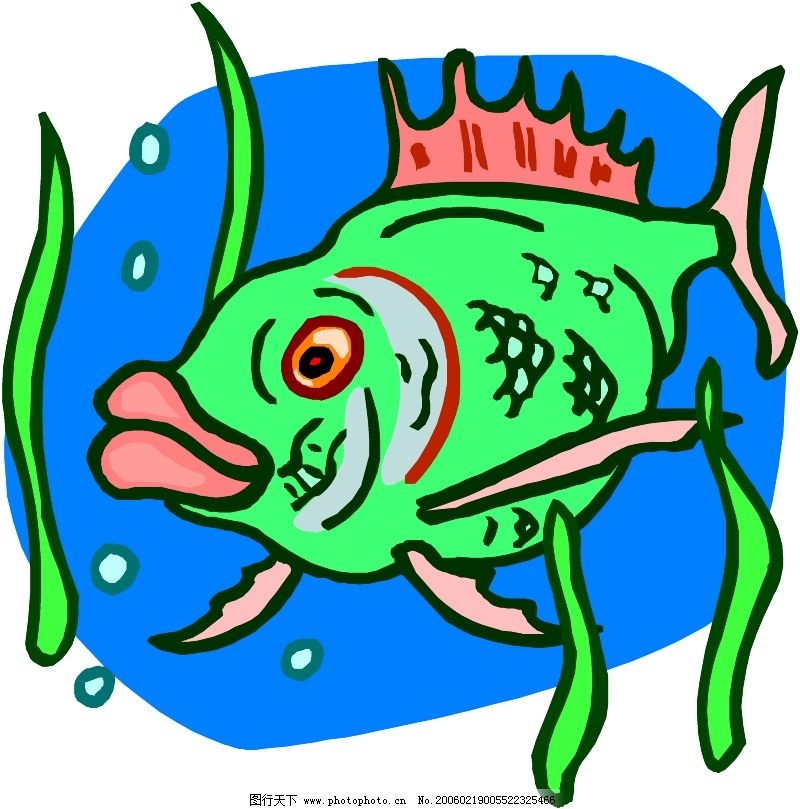 水中动物0218