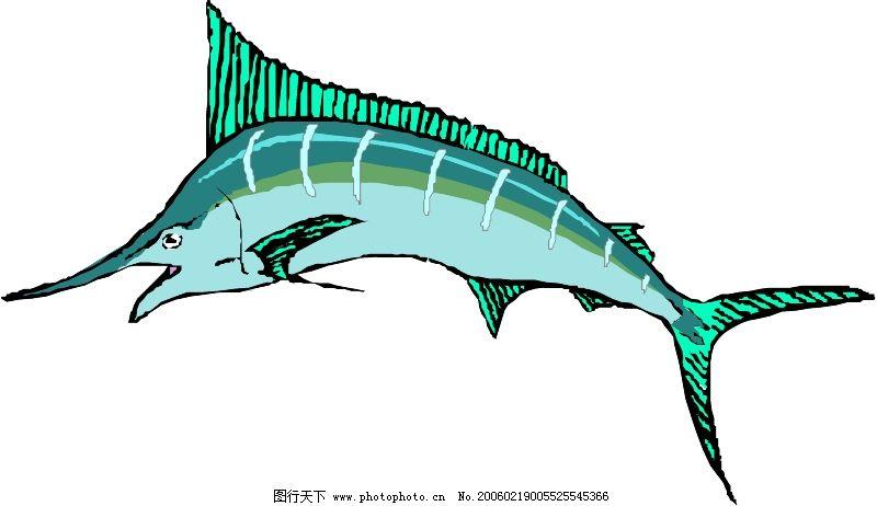 海洋动物0438