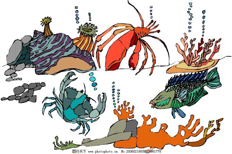 海洋动物0810