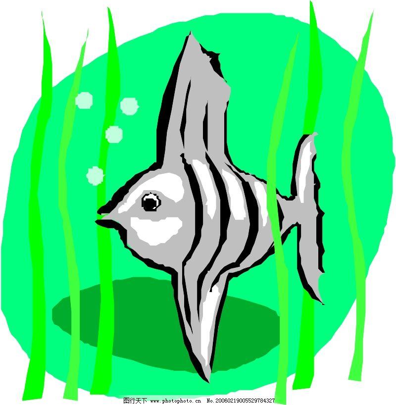 海洋动物0169