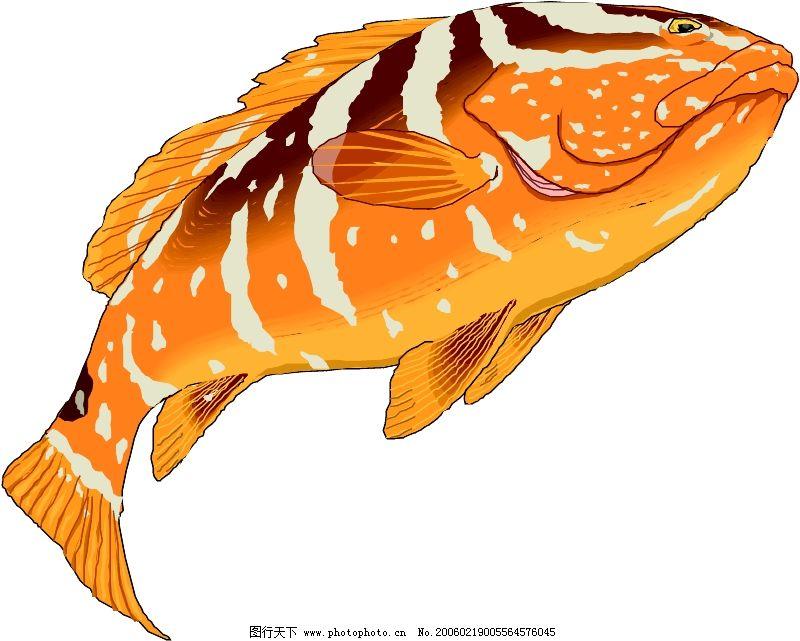 海洋动物0761