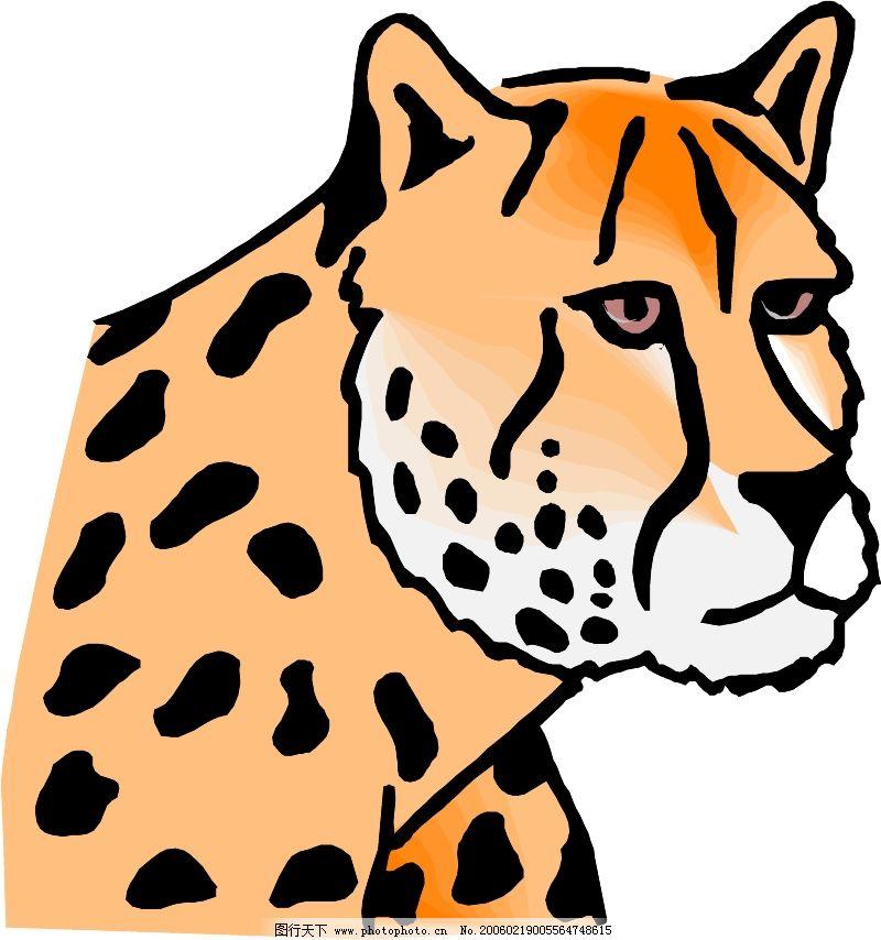 珍稀动物0639