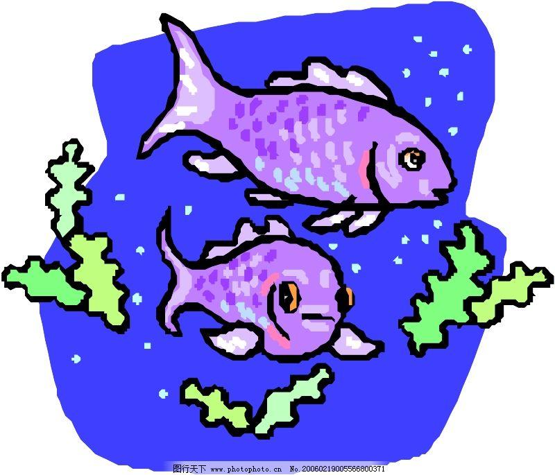 海洋动物0425