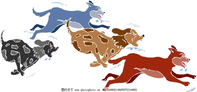 珍稀动物0887
