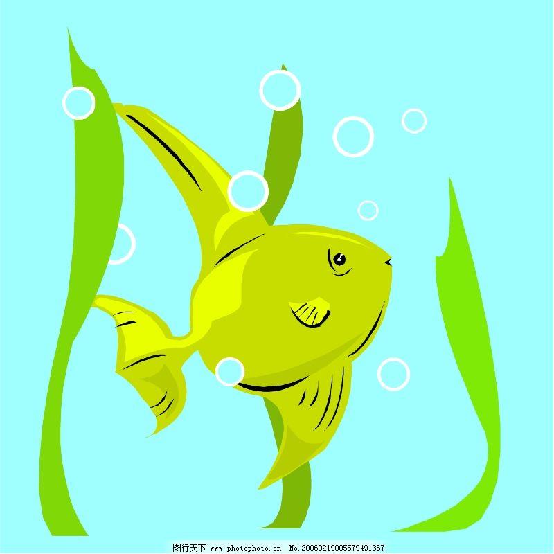 海洋动物0163