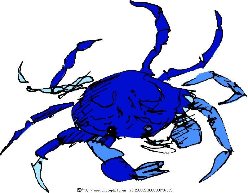 海底世界0509 动物