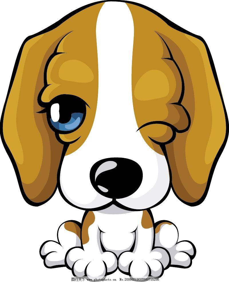 宠物世界0313 动物