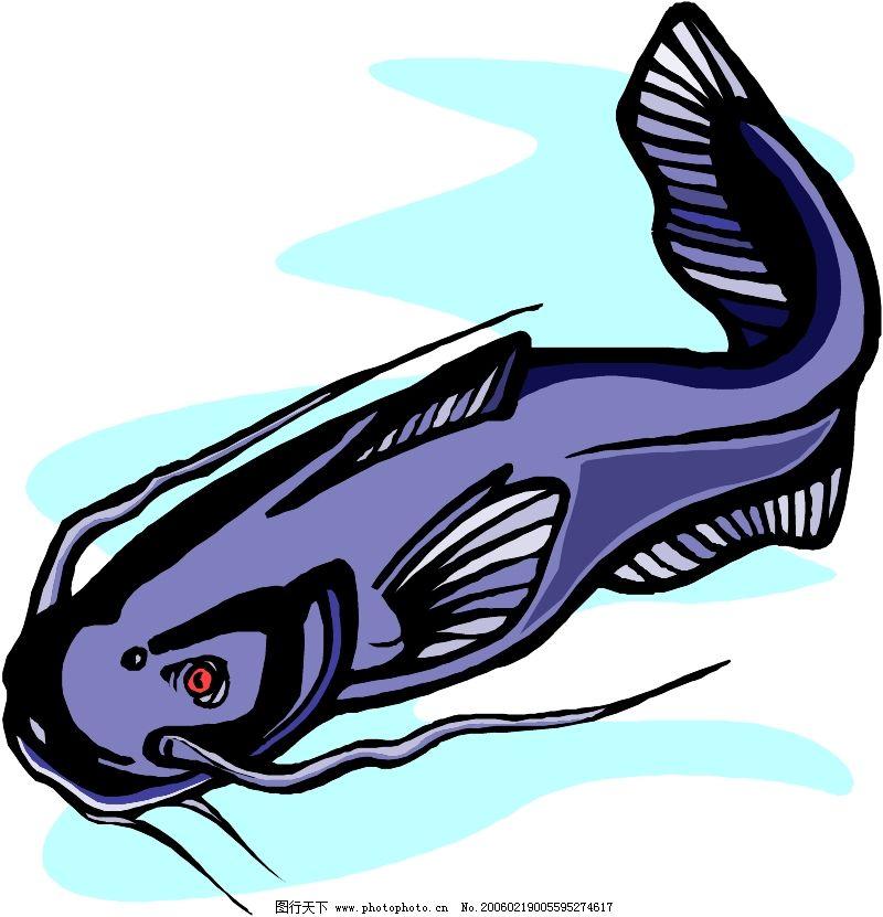海洋动物0397