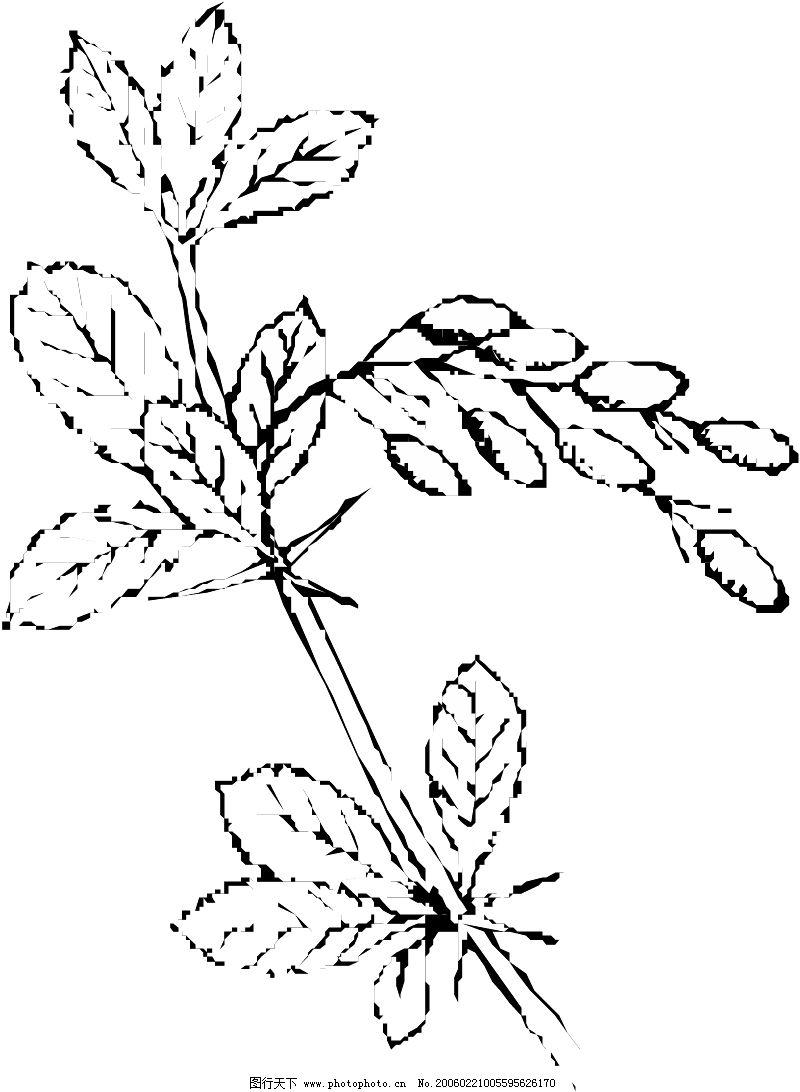 关于 动物的简笔画 植物大树